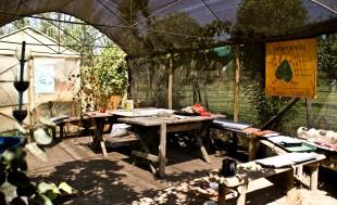 Ecole d'agro-écologie